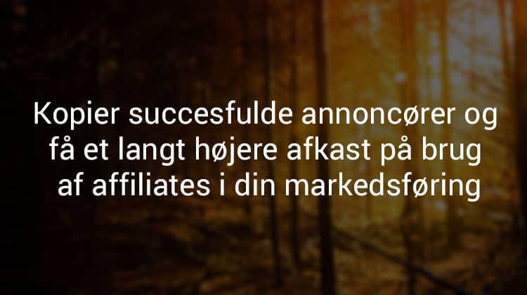 succes-annoncoer-affiliate